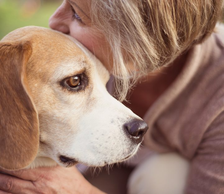 Euthanasia is one of the most difficult decisions any pet guardian must make.