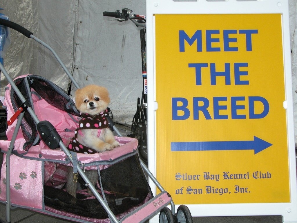 "Many dog shows have ""Meet the Breed"" booths."