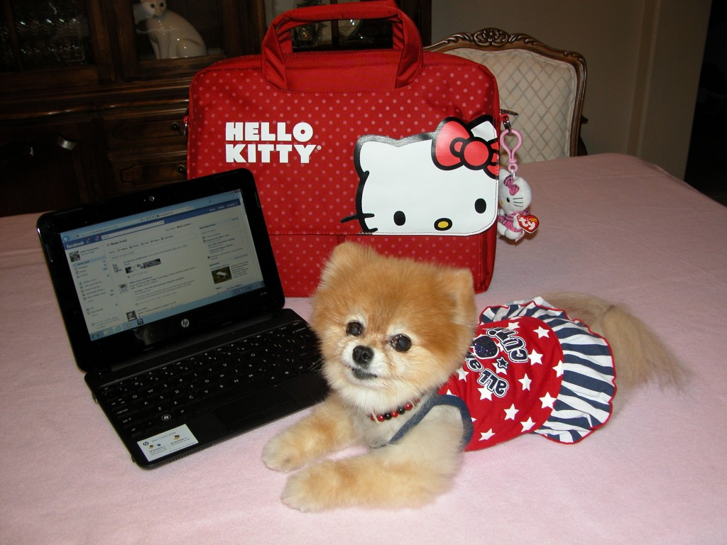 Bella poses next to her Hello Kitty computer bag