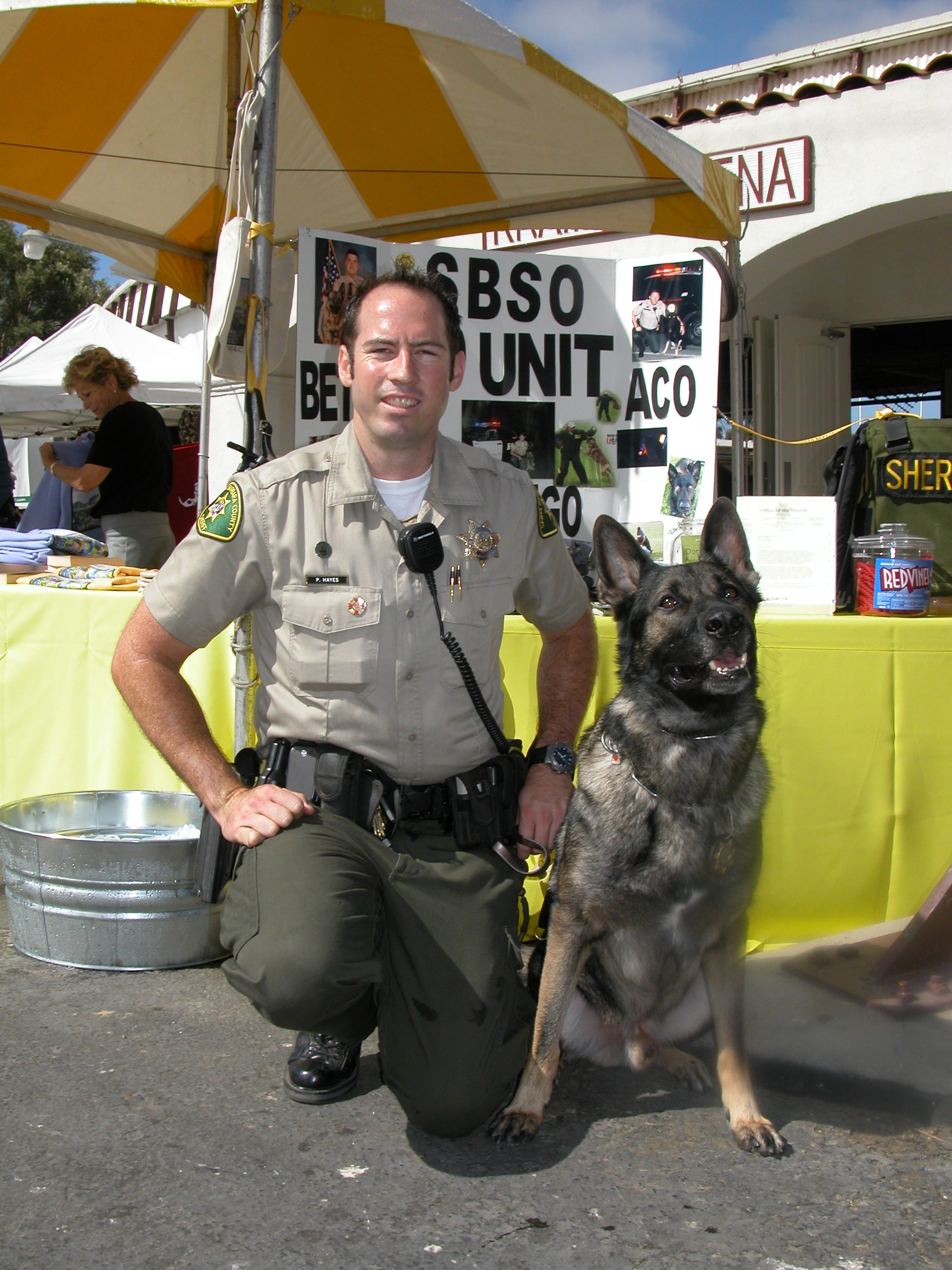 Bella Talks Law And Order With Canine Deputy Gango
