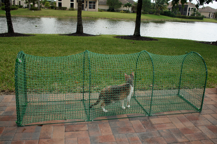 Gallery for gt outdoor cat tunnel