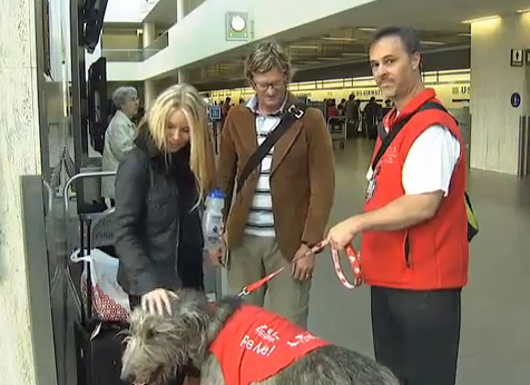 Part of the Pets Unstressing Passengers program at LAX