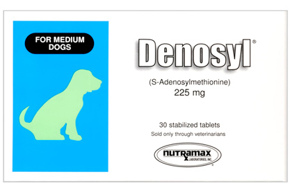 Denosyl is available at 1800PetMeds