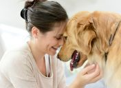 5 ways to celebrate Love Your Pet Day