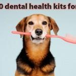 dental_health_sweepstakes