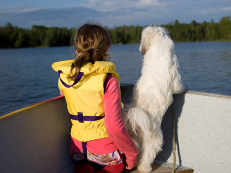 Safety for pets is just as important when engaging in water activities