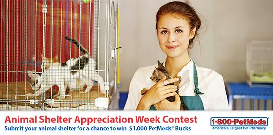 1-800-PetMeds Animal Shelter Appreciation Contest