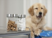 The natural way to support your pet's good health