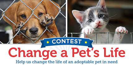 Change a Pet's Life Contest 2016