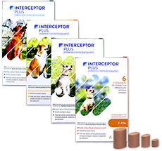 Buy Interceptor Plus at 1800PetMeds