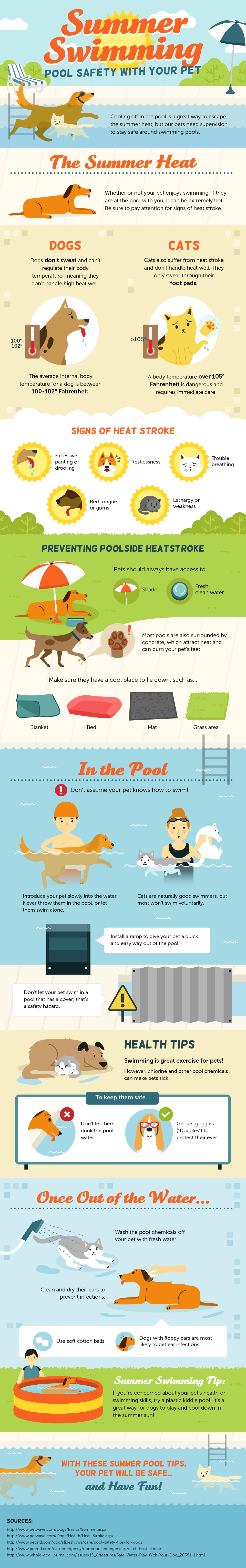 Summer pool safety tips for pets