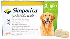 Buy Simparica at 1800PetMeds