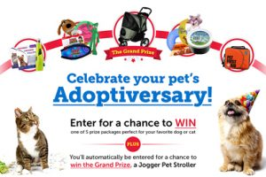Happy Adoptiversary! We've got gifts…