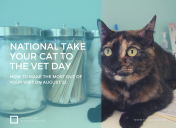 How to get the most out of Take Your Cat to the Vet Day