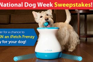 [Sweepstakes] Win an iFetch Frenzy for National Dog Week