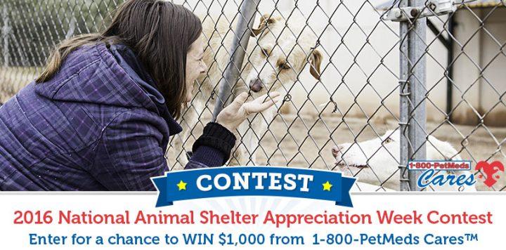 The 2016 1-800-PetMeds Cares National Animal Shelter Appreciation Contest
