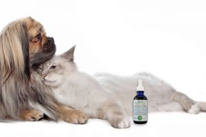 Win Free Richard's Organics Pet Calm