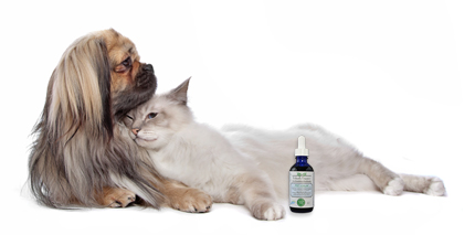 Find Richard's Organics Pet Calm at 1800PetMeds