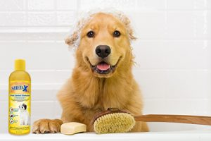 [New Product] SHED-X Shed Control Pet Shampoo