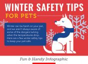 Pet safety during winter weather and holidays