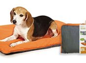 [New Product] Insect Shield Insect Repellent Reversible Pet Bed