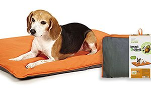 Win a FREE Insect Shield Insect Repellent Reversible Pet Bed