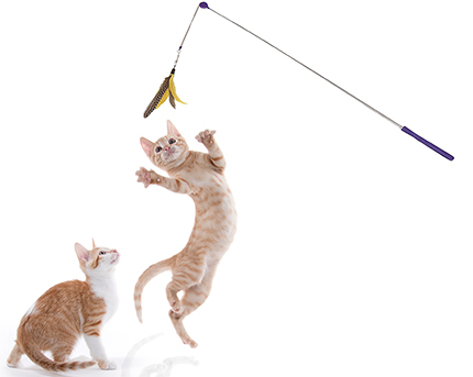 Jackson Galaxy Telescoping Wand Cat Toy