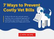 7 simple ways to save money on vet expenses