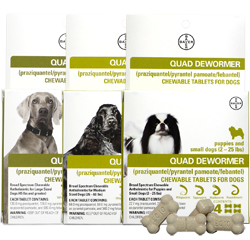 Bayer Expert Care Quad Dewormer for Dogs