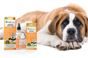 [New Product] ThunderEssence Aromatherapy for Dogs