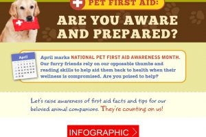 [Infographic] Prevent a pet emergency with these helpful tips