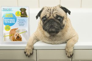 [New Product] Rinse Ace Pet Bathing Tethers