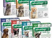 Advantage flea control pet medication
