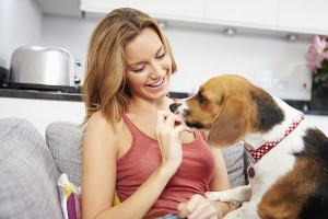 Sentinel vs. Trifexis: Which All-in-One Preventive Is Best for Your Pet?