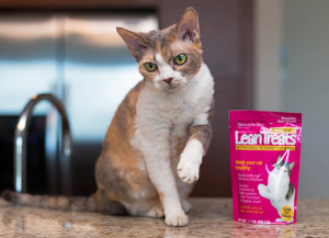 [New Product] Your pet will love these reduced calorie treats