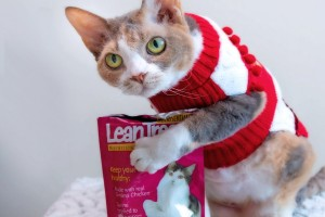 Enter for a chance to WIN a yummy gift for your pet!