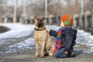 Why your dog needs heartworm prevention all year long