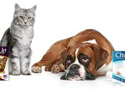 [New Product] CheckUp At Home Wellness Test for Dogs or Cats