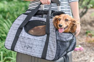 [New Product] Gen7Pets Carry Me Carrier