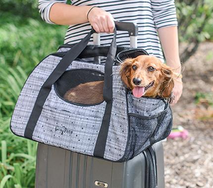 Gen7Pets Carry Me Pet Carrier