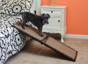 [New Product] Gen7Pets Indoor Carpet Mini Ramp