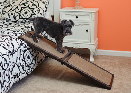 Find the Gen7Pets Indoor-Carpet Mini Ramp at 1800PetMeds