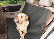 [New Product] Insect Shield Insect Repellent Pet Car Seat Cover
