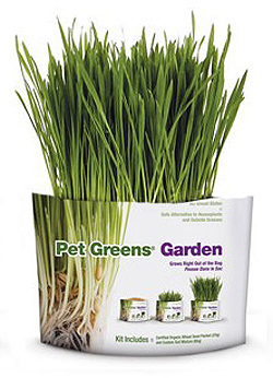 Buy Bell Rock Growers Organic Self Grow Pet Greens at 1800PetMeds