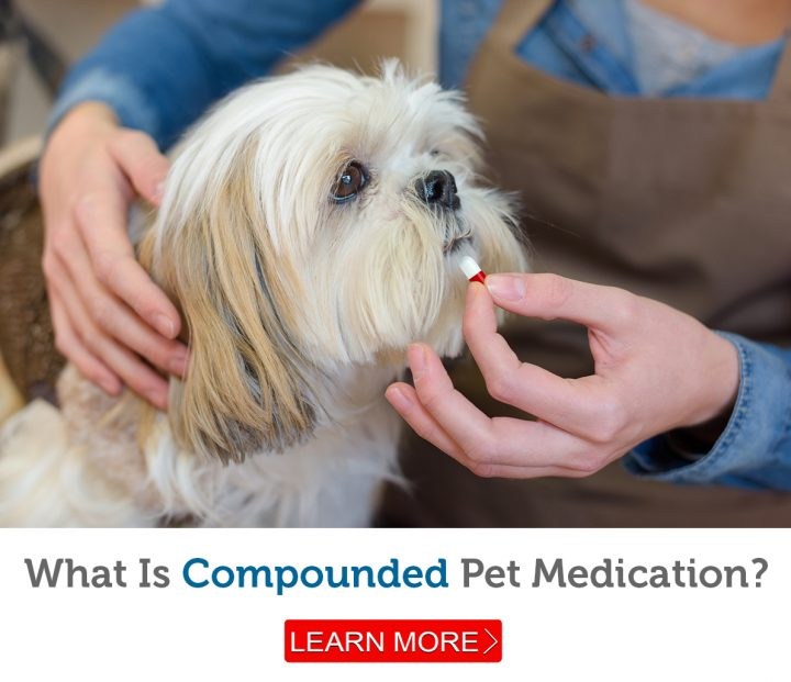 Many dogs and cats are difficult to pill.