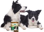 [New Product] NaturVet Digestive Enzymes Plus Probiotic Soft Chews