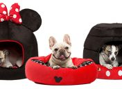 [New Product] Disney Pet Beds
