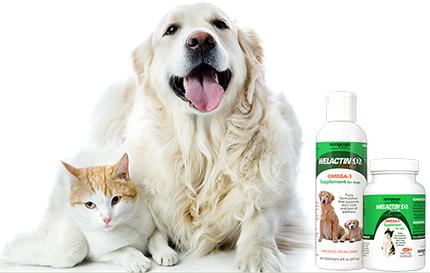 Nutramax Welactin Omega 3 Canine Feline