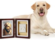[New Product] Pearhead Pawprints Keepsake Frame
