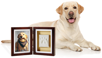 New Product Pearhead Pawprints Keepsake Frame Petmeds Pet Health